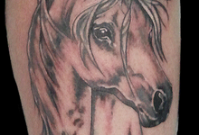 tattoo cavallo